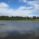 Природное озеро внутри Посёлка