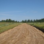 Устройство песчаного покрытия высотой 20 см