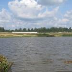 Авугст 2013г. Вид на Поселок со стороны озера